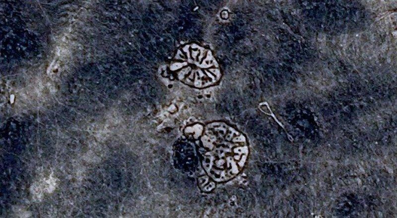 3. Геоглифы в Иордании археолог, загадка, интересное, мир, находка, пустыня, тайна