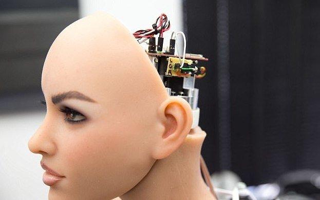 Самые современные секс роботы