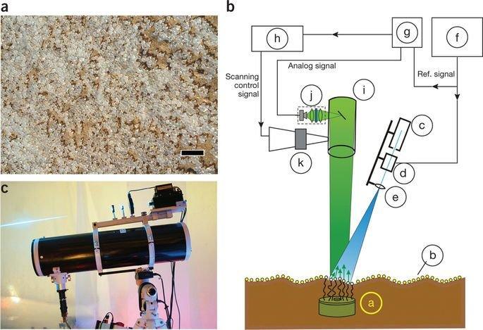 Бактерии для поиска мин медицина, наука, разработки, роботы, техника