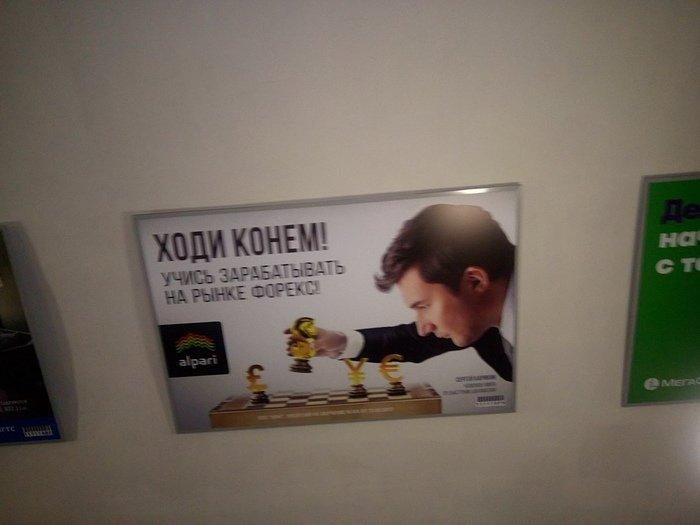 Форекс видео клипы шевцов андрей александрович.forex