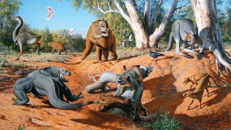 Именно человек виновен в истреблении практически всей мегафауны планеты. В том числе мамонтов, саблезубых тигров, пещерных медведей, гигантских ленивцев и т. д. древние люди, история, факты, человечество