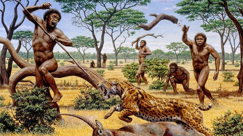 Все остальные виды рода Homo на протяжении двух миллионов лет были отнюдь не на вершине пищевой цепи, а скорее где-то в середине. Охотиться они могли только на мелких животных, избегая встреч с крупными хищниками древние люди, история, факты, человечество
