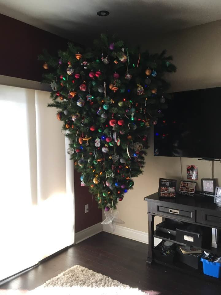 уважаемые читатели, картинка с елкой новогодней на потолке эти
