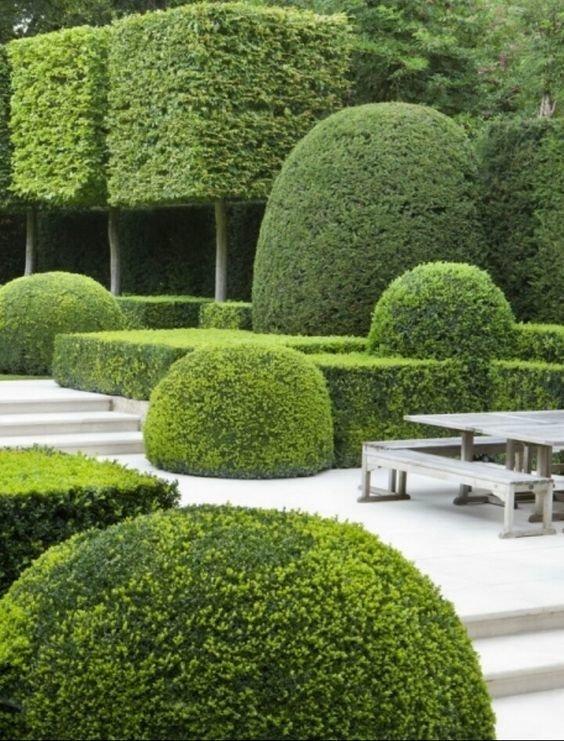 Невероятная геометрия Фабрика идей, искусство, красота, кустарник, сад, топиар, удивительно, фигуры