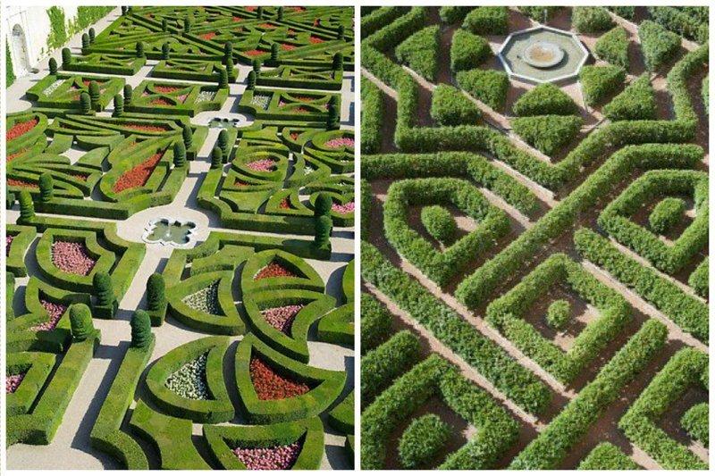 Великолепные лабиринты и композиции из кустов Фабрика идей, искусство, красота, кустарник, сад, топиар, удивительно, фигуры