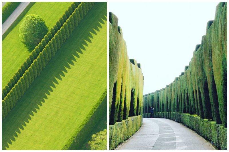 Идеально! Фабрика идей, искусство, красота, кустарник, сад, топиар, удивительно, фигуры