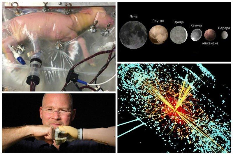 Доклад о научных открытиях 21 века 3506