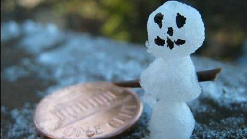 Снеговик величиной с монетку. Теперь вы точно видели всё. зима, креатив, новый год, снег, снеговик, творчество, фото, юмор