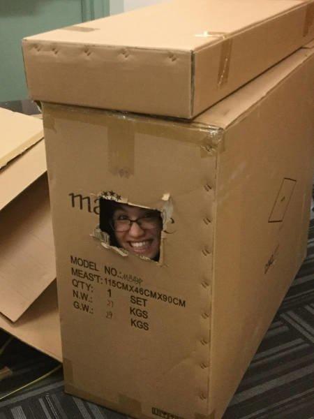 Жизнь в коробке картинка