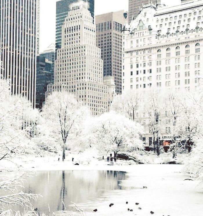 2. Заснеженный Нью-Йорк канада, мороз, погода, сша, фото, холод, явление
