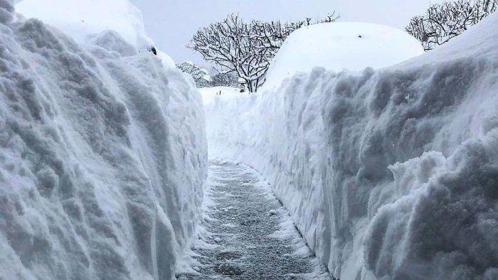 5. Выпало 160 см снега за 2 дня канада, мороз, погода, сша, фото, холод, явление