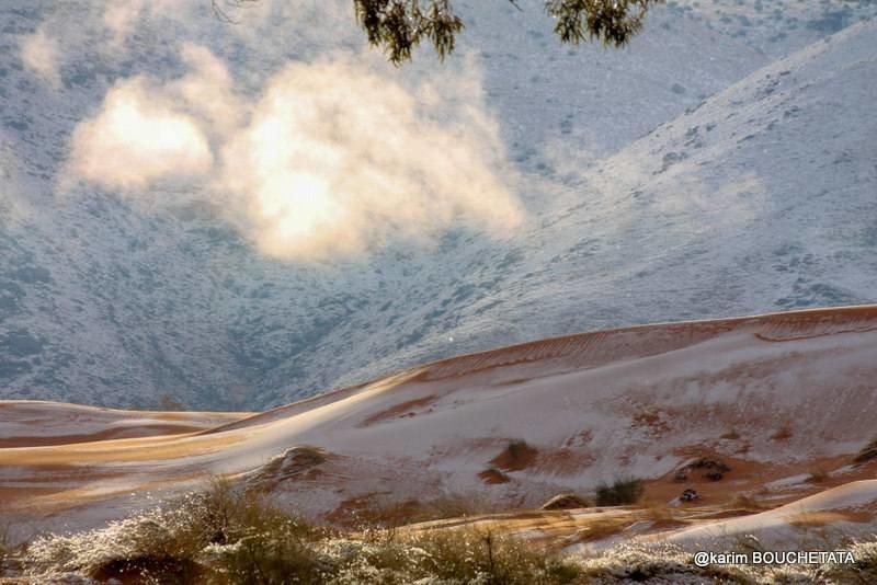 В пустыне Сахара уже третий раз за последние 40 лет выпадает снег в мире, природа, пустыня, сахара, снег