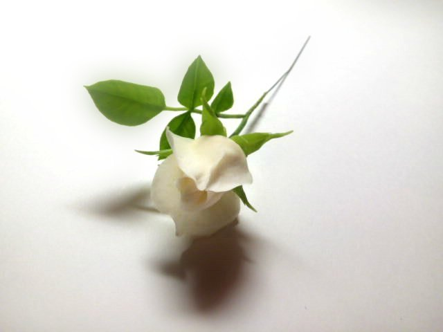 Роза из холодного фарфора и немного фото этапов изготовления с описанием изготовление цветка, лепка розы, рукоделие с процессом, создание розы из фарфора, цветы из глины