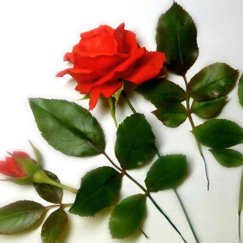 делаем таких веточек несколько,смотря какой пышной Вы хотите сделать розочку. изготовление цветка, лепка розы, рукоделие с процессом, создание розы из фарфора, цветы из глины