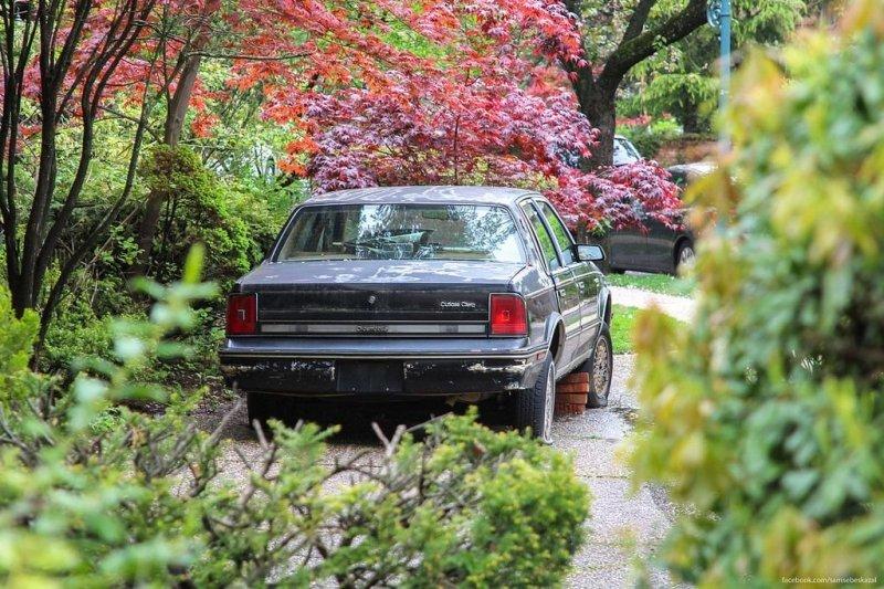 В Куинсе. америка, нью-йорк, олдтаймер, ретро авто, ретро автомобили, сша, фото, фотографии