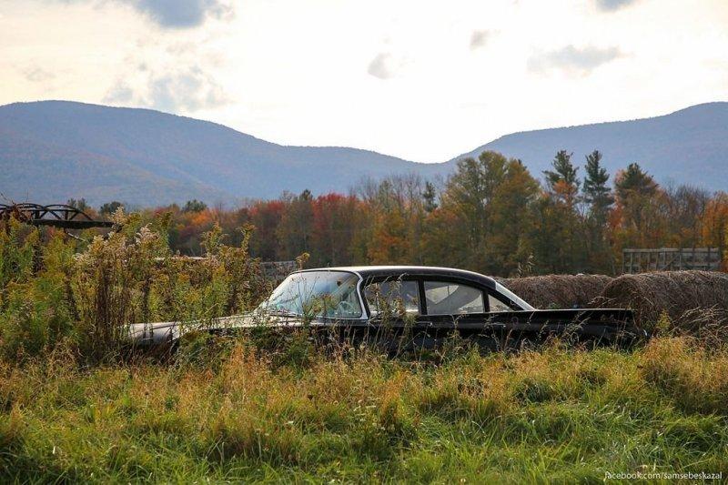 В поле. америка, нью-йорк, олдтаймер, ретро авто, ретро автомобили, сша, фото, фотографии