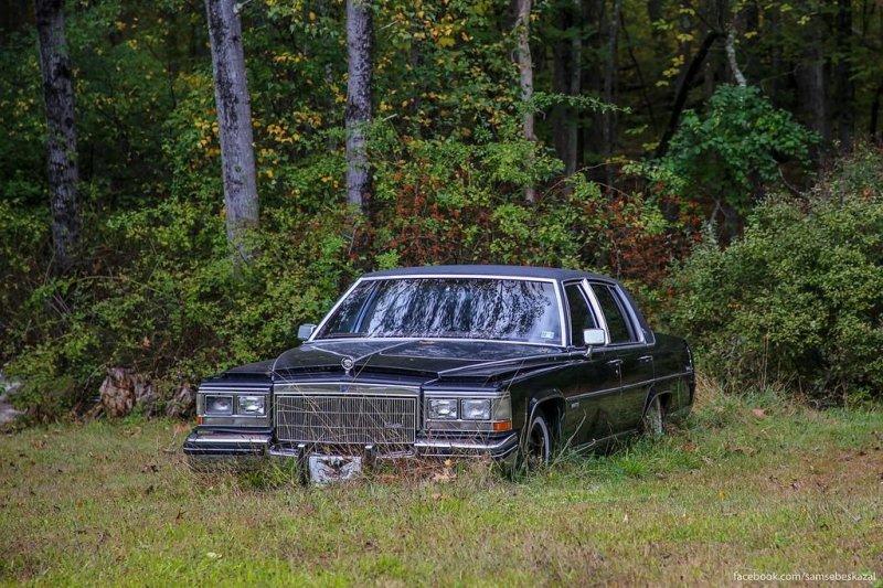 На опушке леса. америка, нью-йорк, олдтаймер, ретро авто, ретро автомобили, сша, фото, фотографии