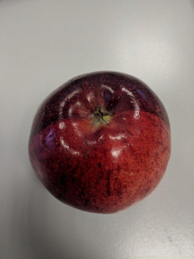 Яблоко, разделенное на цвета точно пополам необычные вещи, прикол, фото
