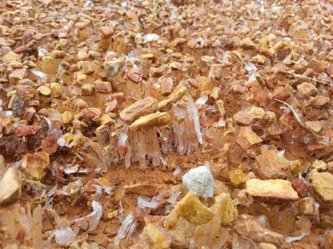 Лед выталкивает камни из грунта необычные вещи, прикол, фото