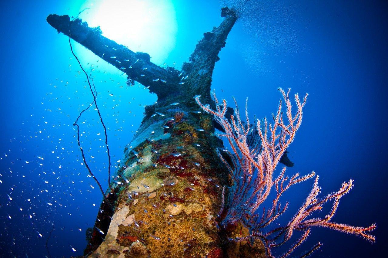Поглощенные водой - ужас и красота затонувшей техники