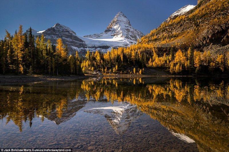 Mount Assiniboyn се отразява в езерото Sunberst, Канада в света, красиви снимки, красива гледка, пейзажи, природа, пътуване, снимки, фотографи