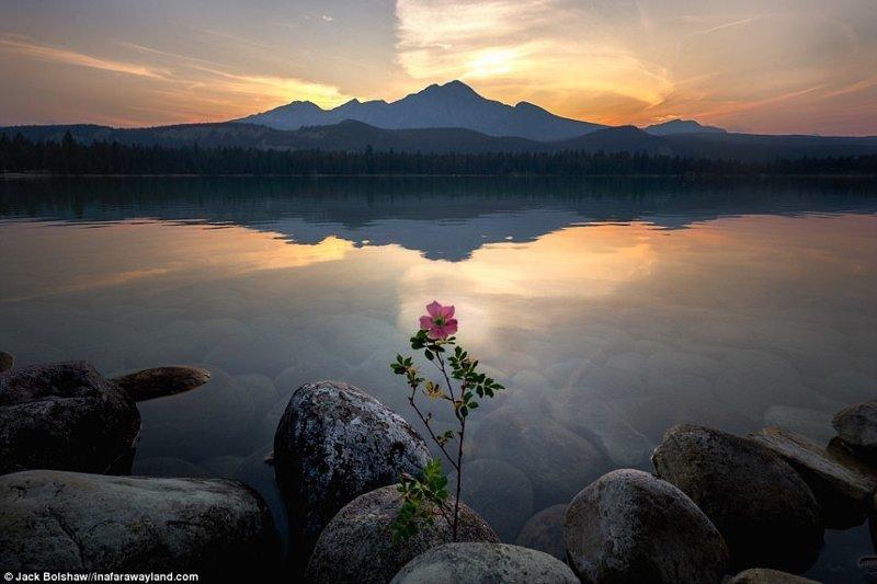 Пирамида Mountain отразено в езерото Анет, Национален парк Джаспър, Канада в света, красиви снимки, красиви, природа, природа, пътуване, снимка, фотографи