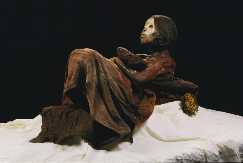 Мумия принцессы Укока, Алтай Мамонты, интересное, мумии, находки, палеонтология, подо льдом, фото