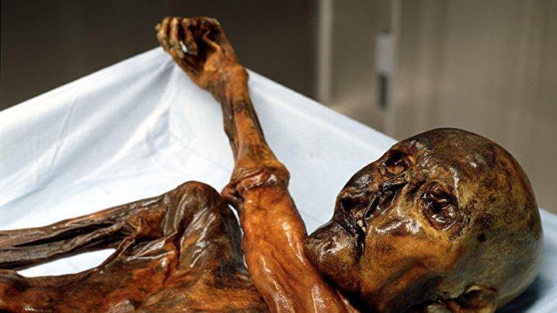 Ледяной человек, Альпы Мамонты, интересное, мумии, находки, палеонтология, подо льдом, фото