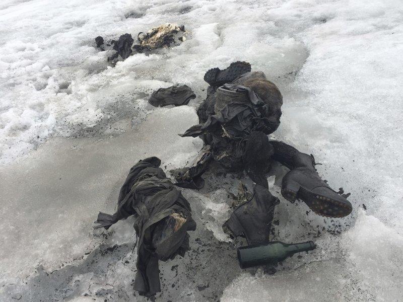 Жуткие вещи, которые были найдены во льдах Мамонты, интересное, мумии, находки, палеонтология, подо льдом, фото