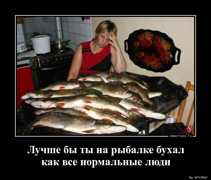 Лучше бы ты на рыбалке бухал как все нормальные люди демотиватор, демотиваторы, жизненно, картинки, подборка, прикол, смех, юмор