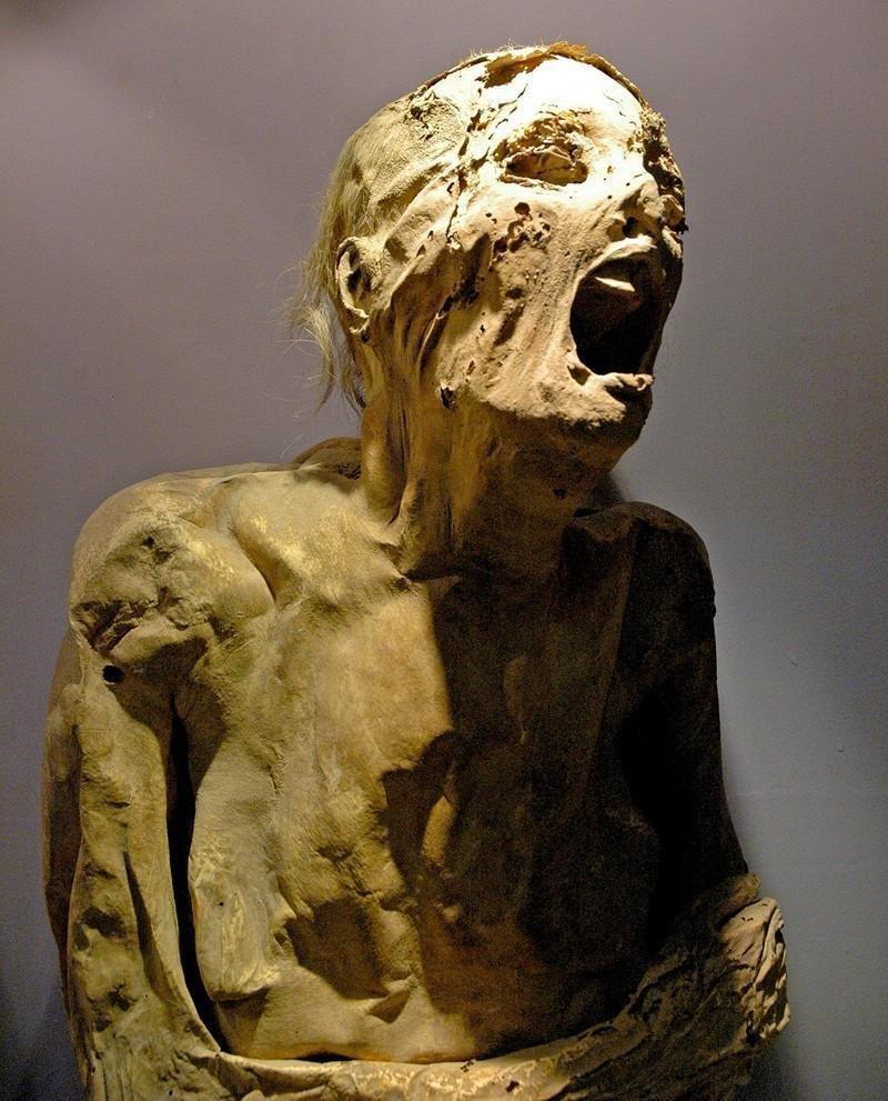 Кричащие мумии из музея Гуанахуато до нашей эры, египет, загадки, интересное, история, мумии, фото