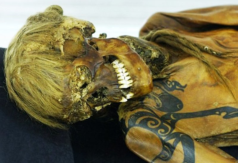 Алтайская принцесса до нашей эры, египет, загадки, интересное, история, мумии, фото