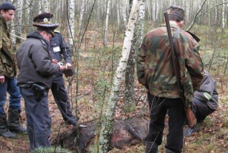 Возвращаемся к старым скрепам или добро пожаловать в новый дивный мир Василий Несветайлов, козёл, убийца