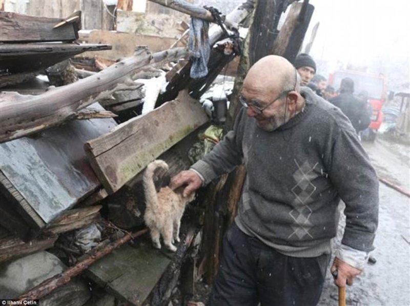 Али всегда очень любил кошек и во время пожара в доме их было несколько. Вытащить из огня удалось лишь этого котенка ynews, доброта спасет мир, котенок, огонь, погорельцы, пожар, трагедия, турция