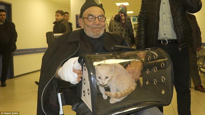 Старика отвезли в больницу, чтобы подлечить небольшие ожоги, но на следующий день он воссоединился со своим питомцем ynews, доброта спасет мир, котенок, огонь, погорельцы, пожар, трагедия, турция