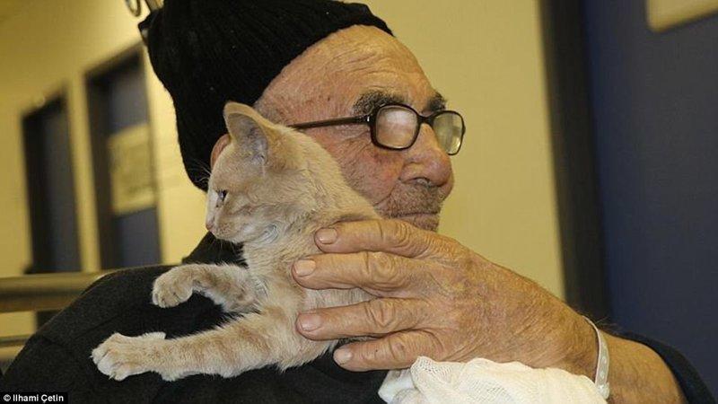 И выглядела их встреча безумно трогательно! ynews, доброта спасет мир, котенок, огонь, погорельцы, пожар, трагедия, турция