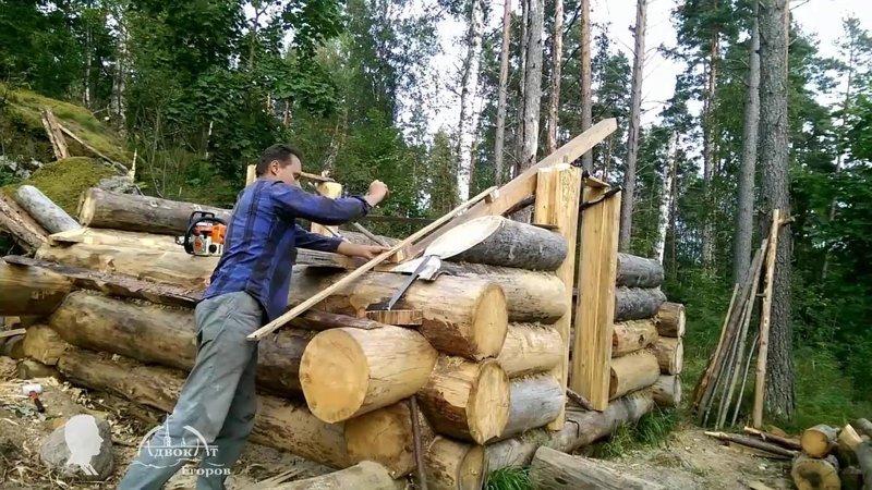 Ищите самородков среди своих адвокат Егоров, изба, строительство