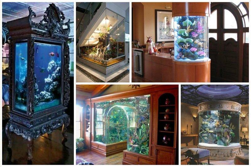Мебель, стены и прочие места для шикарных аквариумов Фабрика идей, аквариумы, виды, красота, невероятно, фантазия