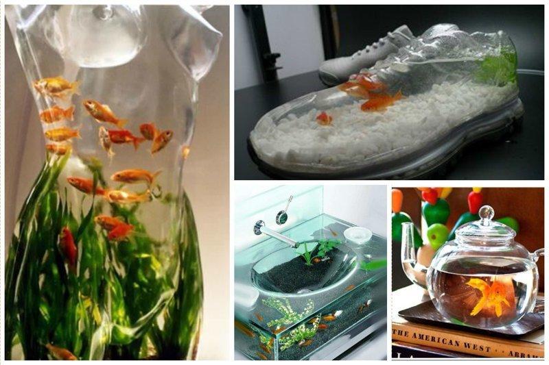 Аквариумисты - сумасшедшие фантазеры Фабрика идей, аквариумы, виды, красота, невероятно, фантазия