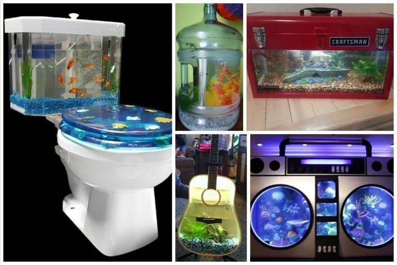 Бытовые предметы Фабрика идей, аквариумы, виды, красота, невероятно, фантазия