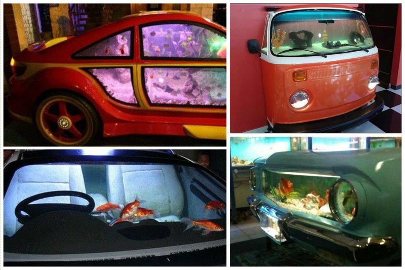 Автомобили Фабрика идей, аквариумы, виды, красота, невероятно, фантазия