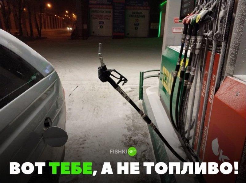 Вот тебе, а не топливо! авто, автомобили, автоприкол, автоприколы, подборка, прикол, приколы, юмор