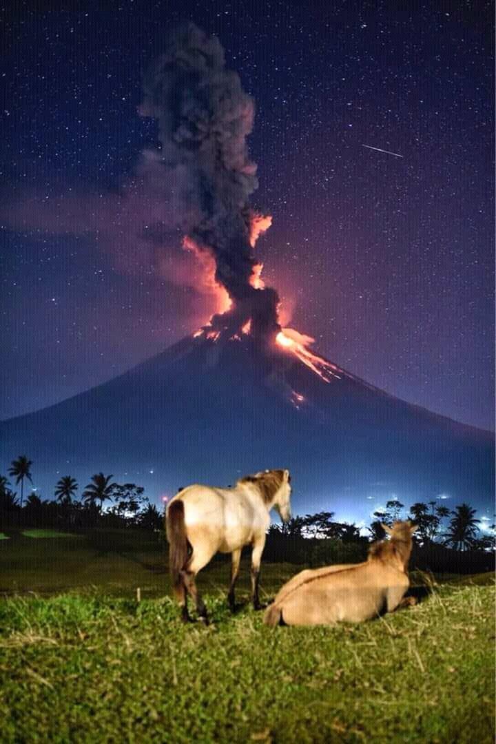 Извержение вулкана Майон, Филиппины день, животные, кадр, люди, мир, снимок, фото, фотоподборка