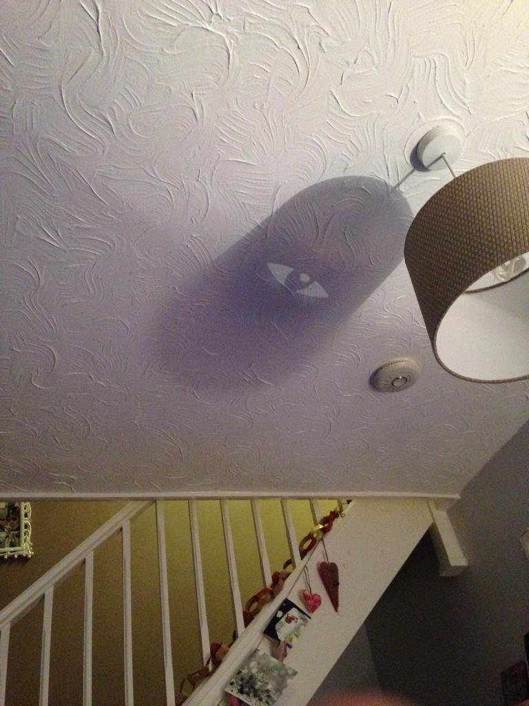 2. Циклоп наблюдает за тобой забавно, подборка, прикольно, тень, юмор