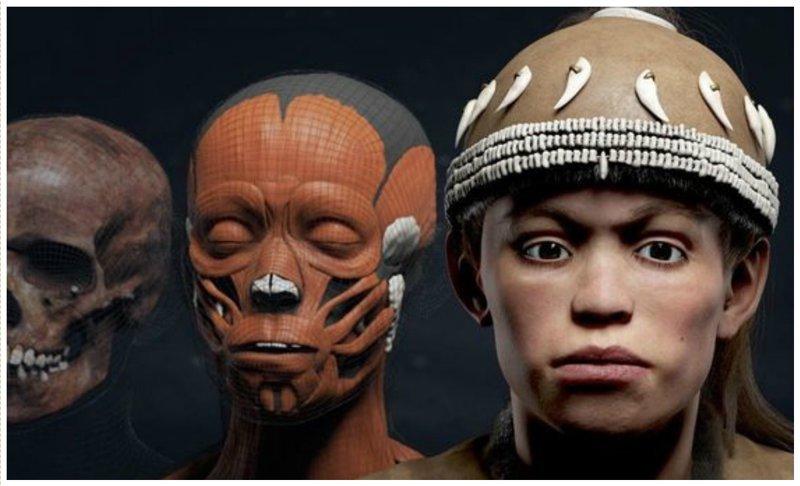 Человек разумный, 30.000 лет антропологическая реконструкция, восстановление, люди прошлого, наука, черепа