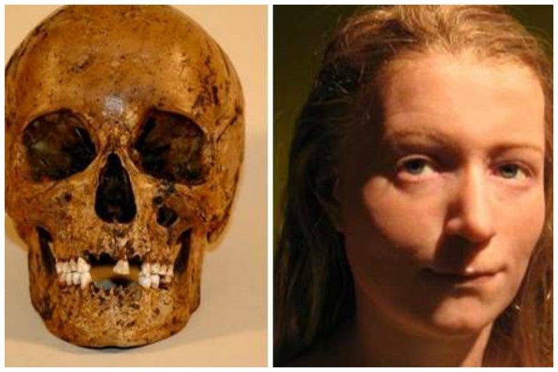 «Малиновая девочка» умерла 5000 лет назад, ее кости были найдены в болоте в Швеции антропологическая реконструкция, восстановление, люди прошлого, наука, черепа