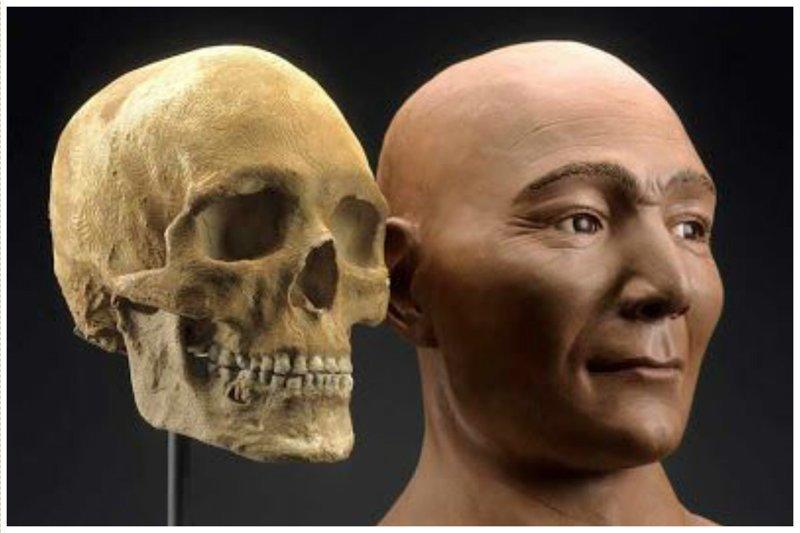 7200 до н.э. череп найден в реке Колумбия, штат Вашингтон антропологическая реконструкция, восстановление, люди прошлого, наука, черепа