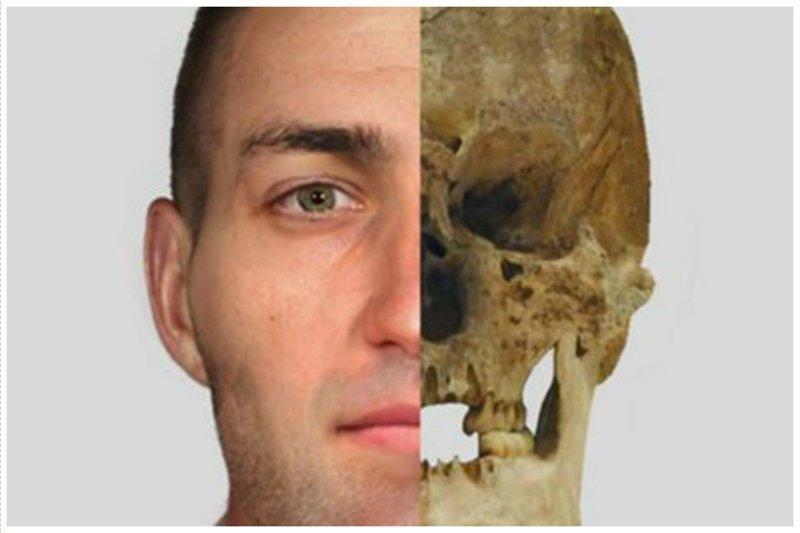 4000-летний череп шотландского фермера антропологическая реконструкция, восстановление, люди прошлого, наука, черепа