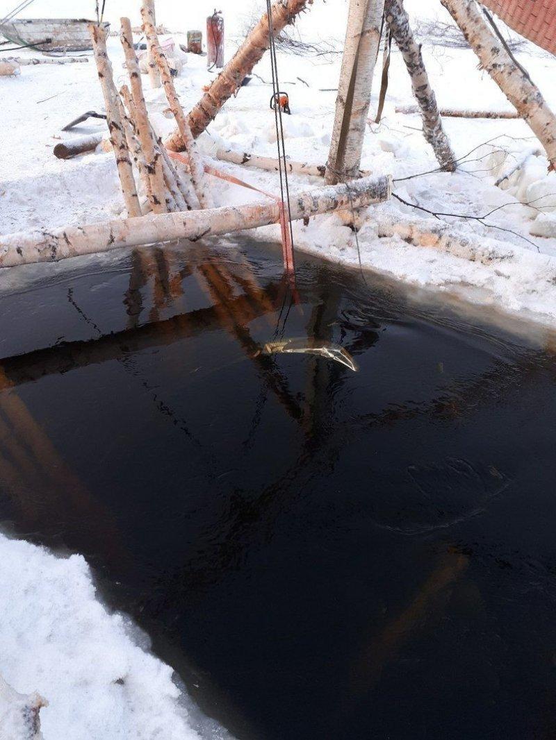 Под Усинском из реки Печоры достали затонувший Toyota Land Cruiser 200 $200, land cruiser, toyota, авто, лед, река, спасатели, спасение
