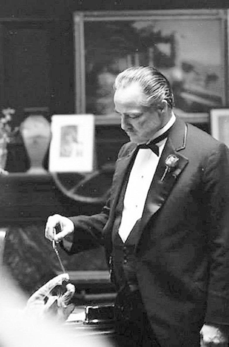 Марлон Брандо жизнь, коты, селебрити